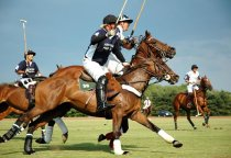 2014 Victory Cup Polo Match To Take Place in Hudson Valley on