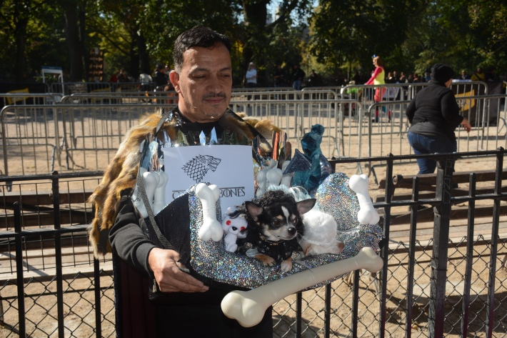 Game Of Thrones at 2014 Tompkins Square Park Halloween Dog Parade