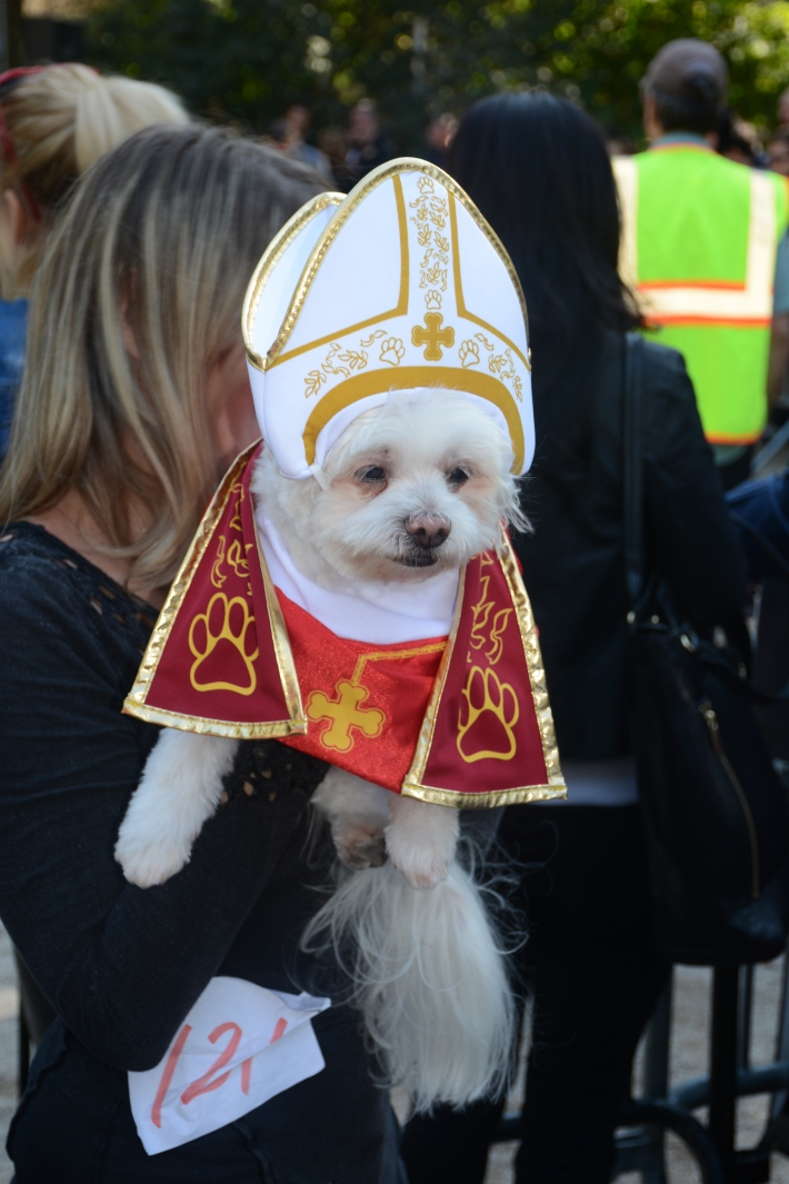 The Pope at 2014 Tompkins Square Park Halloween Dog Parade