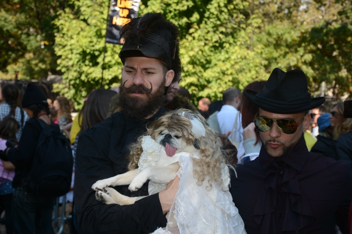 Stevie Nicks at 2014 Tompkins Square Park Halloween Dog Parade