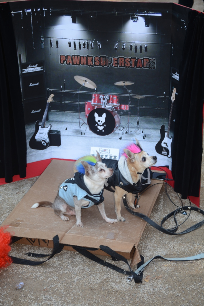 Pawnk Superstars at The Pope at 2014 Tompkins Square Park Halloween Dog Parade