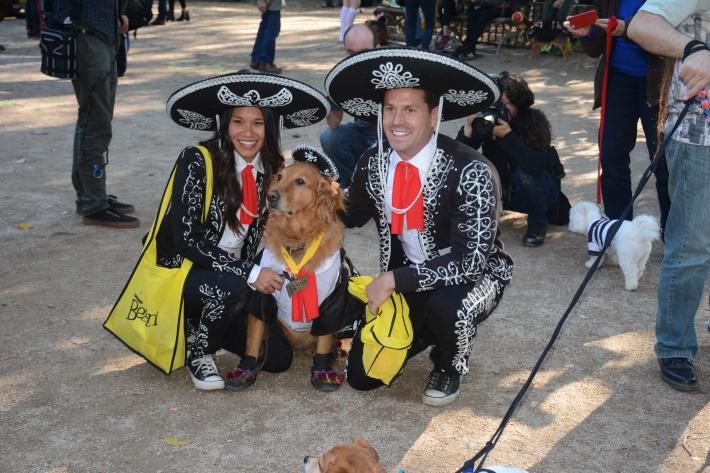 The Three Amigos at 2014 Tompkins Square Park Halloween Dog Parade