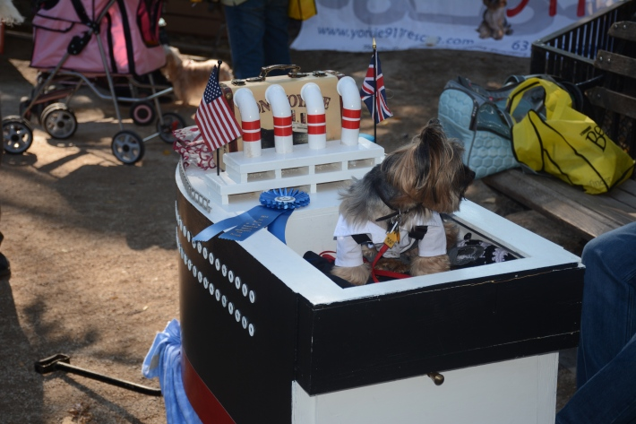 """Best In Show """"Titanic"""" 2014 Tompkins Square Park Halloween Dog Parade"""